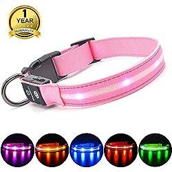 MASBRILL Leuchthalsband für Hunde Aufladbar LED Hundehalsband 100% Wasserdicht Blinkende Lichter mit USB (XS, 35X2cm, Pink)
