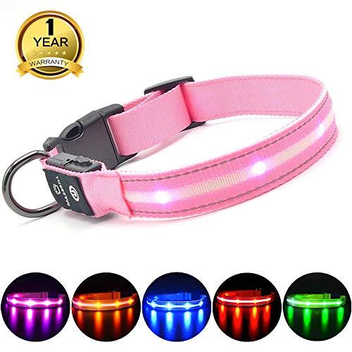MASBRILL Leuchthalsband für Hunde Aufladbar LED Hundehalsband 100{88cf6ac33fa8e2208ea90a6c253bc4565c429decea5f473f2bba0dbe69321cdf} Wasserdicht Blinkende Lichter mit USB (XS, 35X2cm, Pink)