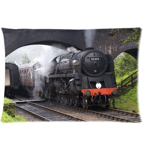 NasNew Steam Locomotive Train Railway Wallpaper Zippered Pillow Cases Cover18X18 inch