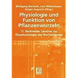 Physiologie und Funktion von Pflanzenwurzeln: 11. Borkheider Seminar zur Ökophysiologie des Wurzelraumes Wissenschaftliche Arbeitstagung in Schmerwitz/Brandenburg vom 25. bis 27. September 2000