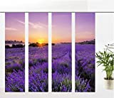 gardinen-for-life Flächenvorhang Lavendelfeld, Provence - 4er - Serie, Set, 2,45 m Hoch