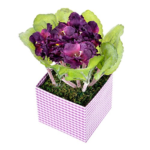 homescapes-artificial-african-violets-dark-magenta-in-square-pot-lifelike-leaves-and-silk-flowers-re