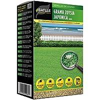 Semillas de Césped - Zoysia Japonica ZENITH 500g - Batlle