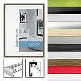Nielsen Design 859656 Wandrahmen C2, Aluminium, 21 x 29,7 cm, Silber