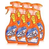 Mr Muscle Bad Total Reiniger 5in1 Orange 500 ml - Beseitigt Bakterien (6er Pack)