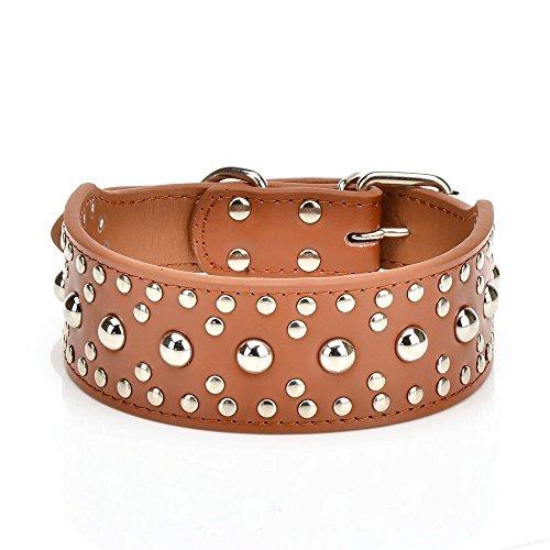 Dogs Kingdom 50,8cm-66cm Pilze Nieten Leder Hundehalsband Pitbull Boxer Hunde Halsband Verstellbar, M, Braun - Pilz Braun Leder