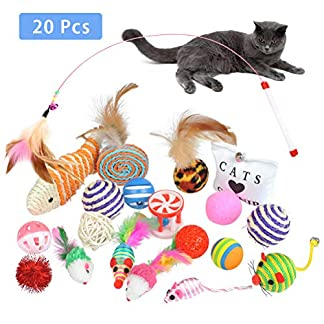 buygoo 20 pack cat interactive toy set funny cat toys kitten toys for indoor cat - cat mouse toys, kitten ball toy, cat fish toy, kitten feather teaser wand toy, cat bell toys, cat catnip toy BUYGOO 20 Pack Cat Interactive Toy Set Funny Cat Toys Kitten Toys for Indoor Cat – Cat Mouse toys, Kitten Ball Toy, Cat Fish Toy, Kitten Feather Teaser Wand Toy, Cat Bell Toys, Cat Catnip Toy 51qpuqDVa3L