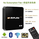 IPTV Box Asian Live Channels Receiver Box With Playback and VOD Functions, Chinese
