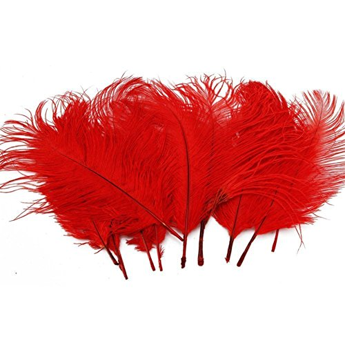 TININNA 50 Stück 5-7 Zoll Natürliche Straußenfedern Strauß Feder für Hochzeit Fest Dekoration rot (Strauß Natürliche)