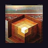 In the Future [Vinyl LP]