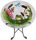 Continental Art Center cac2221491Vogeltränke Glas Schüssel, 13von 2Zoll, Frosch