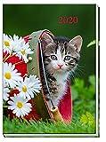 """Taschenkalender """"Katze"""" 2020: A7, Eine Woche auf zwei Seiten, 7 x 10 cm"""