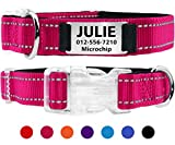 Taglory Personalisiertes Hundehalsband mit Namensschild/Benutzerdefinierte gravierte Pet-ID-Tags ohne Lärm/für Small Medium Große Hunde/Reflektierend/Hot Pink