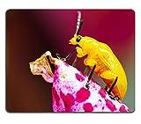 luxlady Naturkautschuk Gaming Mousepads gelb Käfer Einstellung auf Orchidee Blume Makro View Bild-ID 27824975