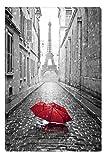 Startonight Leinwand Wand Kunst Schwarz und Weiß Regenschirm in Paris, Doppelansicht Überraschung Modernes Dekor Kunstwerk Gerahmte Wand Kunst 100% Ursprüngliche Fertig zum Aufhängen 60 x 90 CM