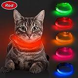 BSEEN LED-Hundehalsband, USB-wiederaufladbar, leuchtendes Hundehalsband für kleine Hunde, Sicherheits-Katzenhalsband mit verstellbarem Nylon-Gurtband, hohe Sichtbarkeit für Hunde und Katzen, rot