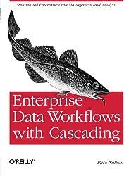 Enterprise Data Workflows with Cascading