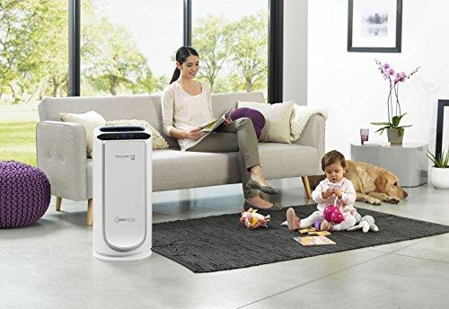 Rowenta PU4020 Intense Pure Air - Purificador de aire (hasta 30 m², sensores del nivel de contaminación, 4 niveles de filtración)