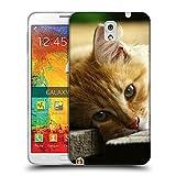 Just Phone Cases Schutz Hülle TPU Case Schutzhülle Silikon Tasche Dünn Transparent // V00004287 Katze liegend auf Holzbrettern // Samsung Galaxy Note 3 III N9000 N9002 N9005