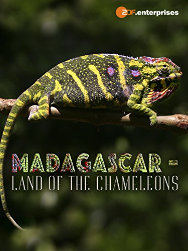 Madagascar - Land of the Chameleons