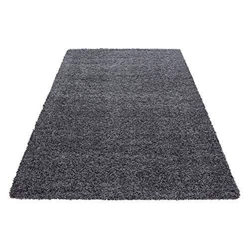 Hochflor Shaggy Teppich für Wohnzimmer Langflor Pflegeleicht Schadsstof geprüft 3 cm Florhöhe Oeko Tex Standarts Teppich, Maße:240x340 cm, Farbe:Grau