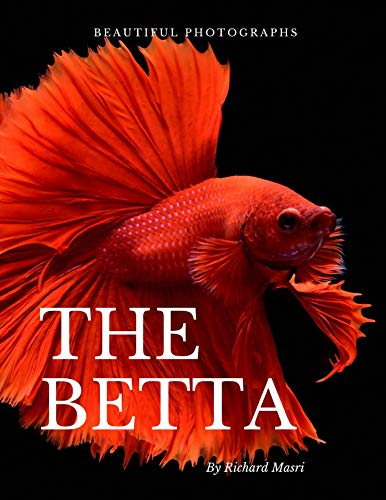 Beautiful Photographs of The Betta: A Collection of Betta Fish Photos! (Adorable Animals) (English Edition)