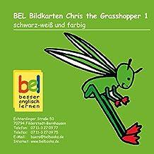 Learning English with Chris the Grashopper Bildkarten CD-ROM 1: schwarz-weiß und farbig - passend zu Workbook 1