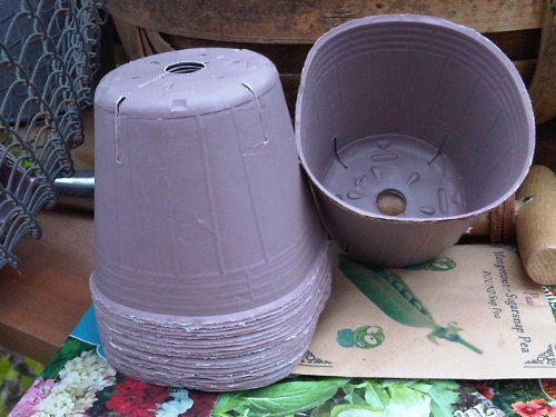 becausewecare-vasi-biodegradabili-e-compostabili-alternativa-ecologica-ai-vasi-in-torba-e-in-plastic