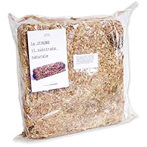 Sfagno Cileno Premium in Fibre 500 gr, Substrato Naturale, Sfagno per Orchidee e Bonsai