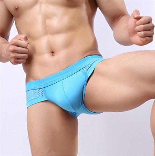 EMIN Sexy Herren Dessous Herren Tanga Unterhose Männer Unterwäsche Hipster Slips Briefs Microfaser Pants Blau