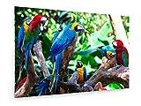 Igor Terekhov - Gruppe von schönen Papageien in Einem Baum - 120x80 cm - Leinwandbild auf Keilrahmen - Wand-Bild - Kunst, Gemälde, Foto, Bild auf Leinwand - Tiere
