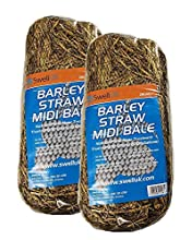 Swell UK Barley Straw Bale 2PK Blanket Weed Pond Treatment Midi Bale …