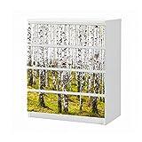 Set Möbelaufkleber für Ikea Kommode MALM 4 Fächer/Schubladen Birke Birkenwald Baum Bäume Stamm Wald Landschaft Aufkleber Möbelfolie sticker (Ohne Möbel) Folie 25B1149