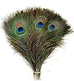 TININNA 50 Stück 10-12 Zoll Natürliche Pfauenfedern für Handwerk Kunst Kleid Hüte Braut Kostümparty