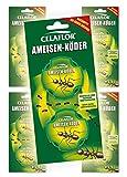 10 Stück Celaflor® 1340 Ameisen-Köder Dose