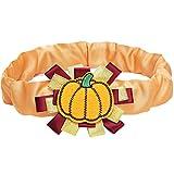 Blueberry Pet Halloween & Erntedank Herbstcharme Kürbis Hundehalsband-Überzug für S, M, L Halsbänder, Dekoratives Festtags-Accessoire für Haustierhalsbänder