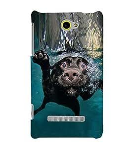 PrintVisa Dog Swimming 3D Hard Polycarbonate Designer Back Case Cover for HTC Windows Phone 8S :: HTC 8S