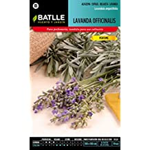 Semillas Batlle 097303BOLS - Lavanda