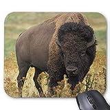 BGLKCS Buffalo Mouse Pad