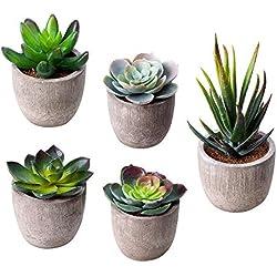 5 Piezas Plantas Suculentas Artificiales Con Maceta Decorativas