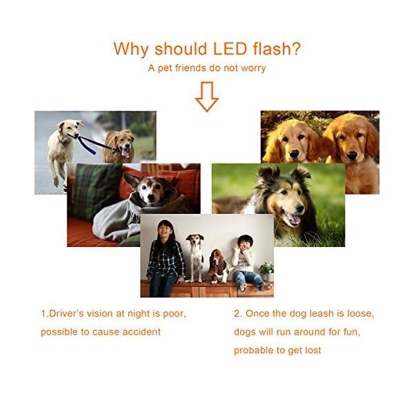 Top Munster Flashing SpotLit Cat / dog Collar Light,LED Pet Safety Light Luminous Pendant for Outdoor Safety (2 Pcs Red + Blue) 5