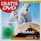 Eisbären / Imhotep - Magier des Pharao