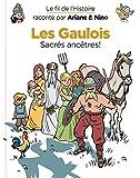 Le fil de l'Histoire raconté par Ariane & Nino - tome 3 - Les Gaulois