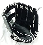 Ram Sharnam Sports Baseball Gloves (Black and Silver)