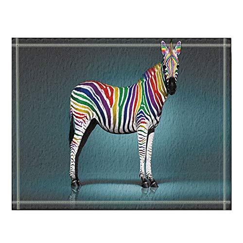 GzHQ Tier Pferd Dekor Digitaldruck Zebra Bad Teppiche rutschfeste Boden Eingänge Outdoor Indoor Haustür Matte 16X24 Zoll Badematte -