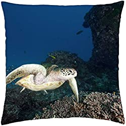 "Tranquil Turtle - Throw Pillow Cover Case (18"" x 18"")"