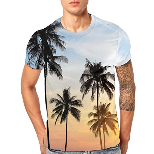 Sport T-Shirt Herren Sommer Klassischen Hawaii Hemd Männer 3D Drucken Tees Kurzarm Bluse Tops Outdoor Jogging Sweatshirt Weiß Shirt