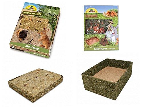 jr-farm-back-to-instinct-spiel-relax-set-inkl-naturwiese-alktiv-teppich-buddel-box-by-zooloxc