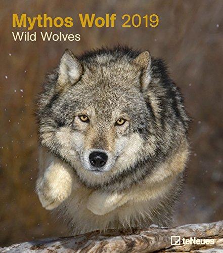 Mythos Wolf 2019 - Tierkalender, Wölfe Kalender, Naturkalender, Wandkalender, Posterkalender - 30 x 34 cm