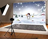 YongFoto 2,2x1,5m Foto Hintergrund Weihnachten Vinyl Weihnachtsszene DIY Schneemann Schneebedeckte Landschaft Schneeflocken Winter Wunderland Fotografie Hintergrund Foto Leinwand Kinder Fotostudio